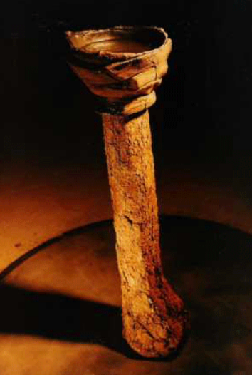 Palo de Agua II